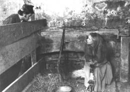 DER PLÖTZLICHE REICHTUM DER ARMEN LEUTE VON KOMBACH // Fotos / Szenenfoto 14