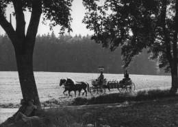 DER PLÖTZLICHE REICHTUM DER ARMEN LEUTE VON KOMBACH // Fotos / Szenenfoto 1