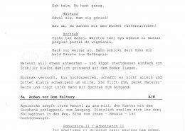 """STRAJK // Vorbereitungsmaterial / Drehbuchauszug """"Heldin wider Willen"""", 2"""