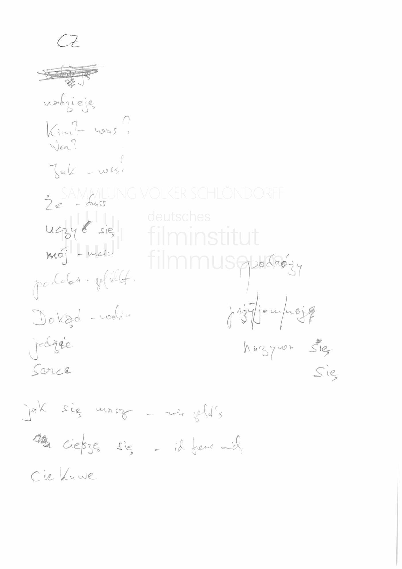STRAJK // Vorbereitungsmaterial / Polnischunterricht, 19